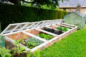 Image of a backyard cold frame and miniature greenhouse next to a green lawn.