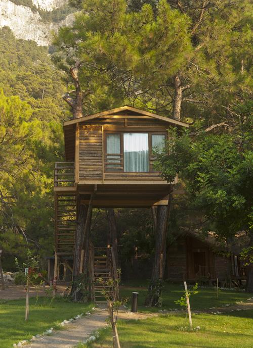 peter-pan-treehouse