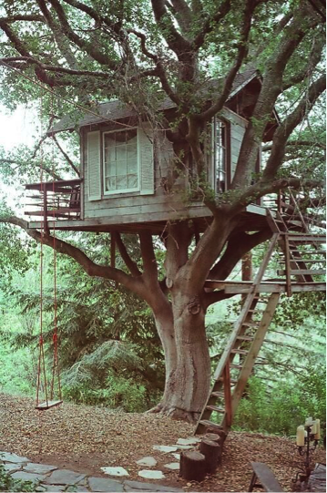 Treehouse with white shutters and swing. Featuring sturdy wooden staircase and criss-crossed windows.